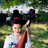 盛乐 专业紫檀木清水琵琶SY-5519优质演奏级专用成人琵琶乐器 琵琶