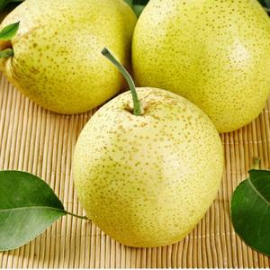 梨子新鲜雪梨当季水果现摘孕妇雪花梨非南果秋月梨砀山梨带箱10斤
