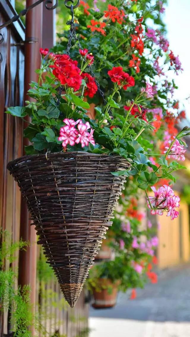 春暖花开也许是你的浪漫情怀