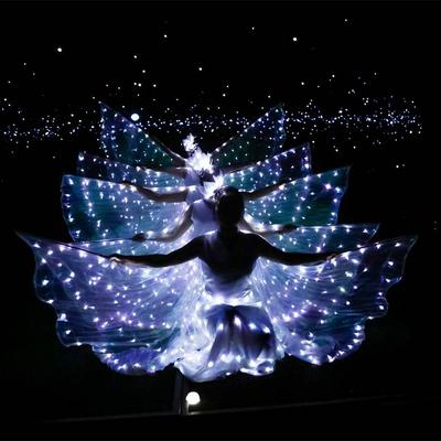 LED luminous wings, ballet performance costumes, fluorescent butterfly dance cloak, dance costume, belly dance cloak props.