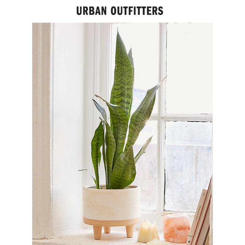 天然黏土拼色砂质哑光圆柱型花盆  Urban Outfitters 家居装饰盆