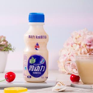 胃动力 乳酸菌饮品儿童牛奶酸奶饮料整箱包邮340mlx12瓶