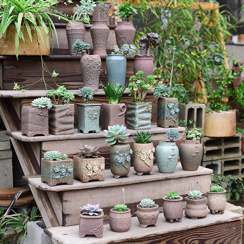 Fleshy mage basin of the old running number tall plant creative coarse pottery clay POTS burned clay permeability of primitive simplicity of household