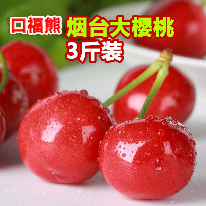 国产现摘现发 口福熊 烟台大红灯樱桃车厘子3斤(22-26mm)