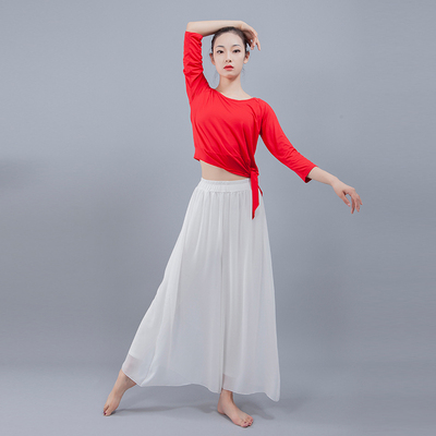Elegant Chiffon Modern Dance Training Trousers Classical Dance Dresses Female Dance Performing Dresses National Dance Dresses Broad-legged Trousers