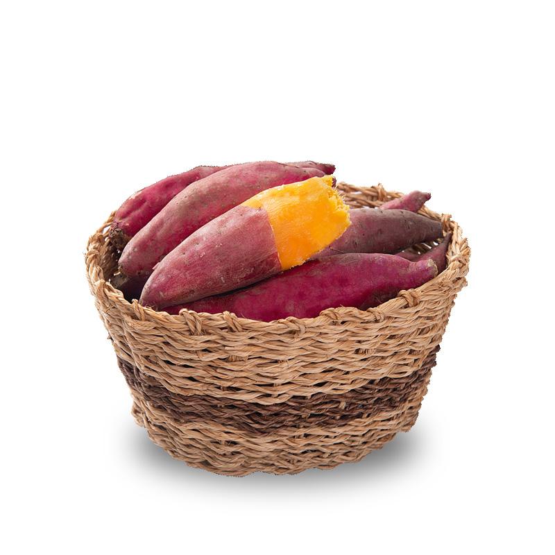 新鲜小香薯5斤左右农家红薯新鲜番薯板栗山芋地瓜非紫薯六鳌蜜薯