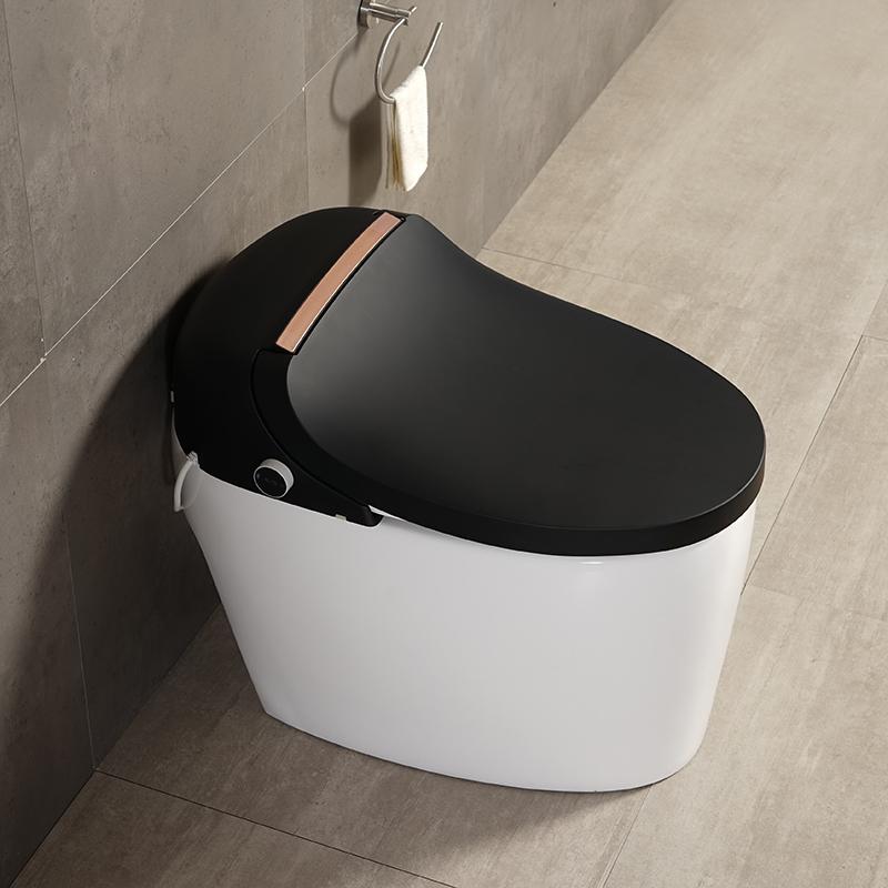 德国摩至全自动翻盖智能马桶一体即热式清洗烘干双频双模家用座便
