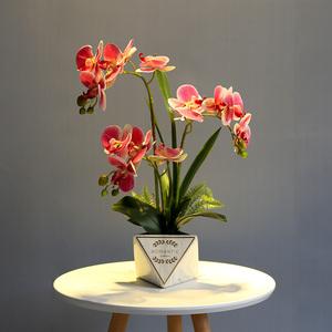 清新仿真蝴蝶兰花假花套装新中式家居客厅餐桌书房装饰盆栽花摆设