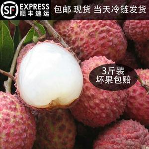 农家生鲜急冻荔枝桂味水果之王清甜多汁3斤特
