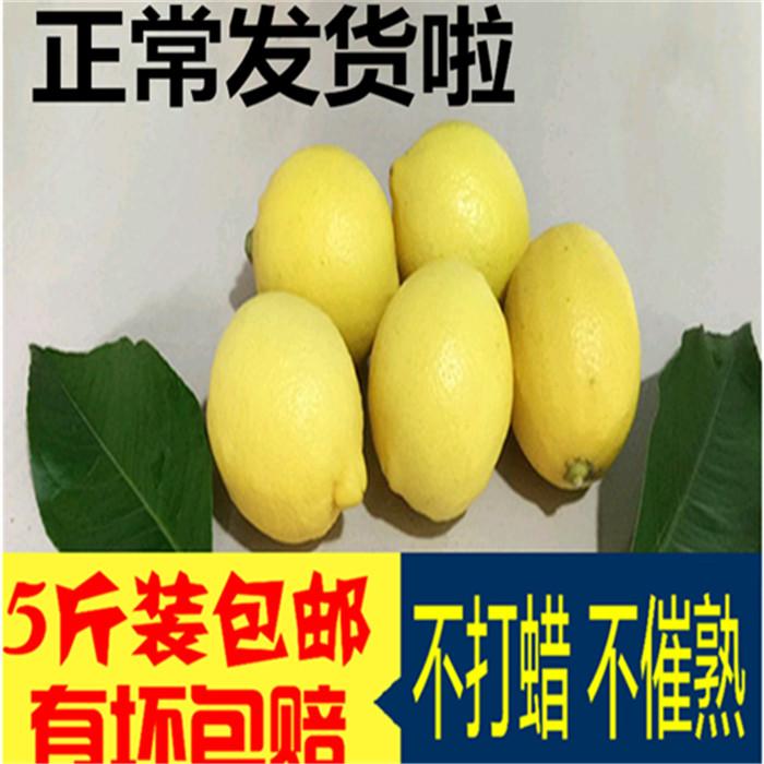 【清新果香】安岳柠檬5斤装