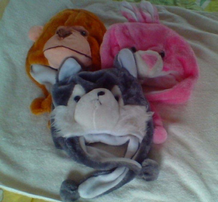 动物卡通帽猴子,小白兔