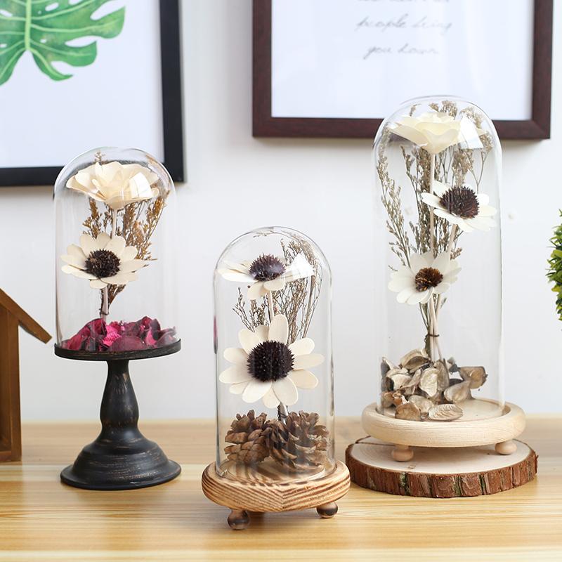 海贝海创意玻璃罩摆件
