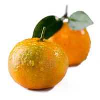 【天猫超市】满199减100广西沙糖桔1kg  桔子 柑橘 新鲜水果