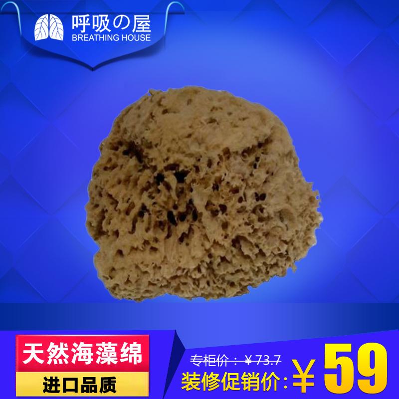 呼吸屋天然海藻棉海藻棉工具88