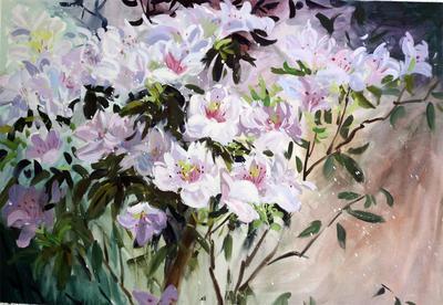 美良书画苑无框画水粉花卉客厅装饰画纯手绘杜鹃花