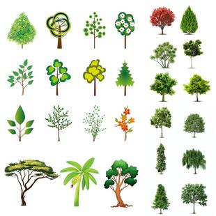 创意卡通四季常青大树木苗彩绘植物树绿叶插画设计矢量图素材图片