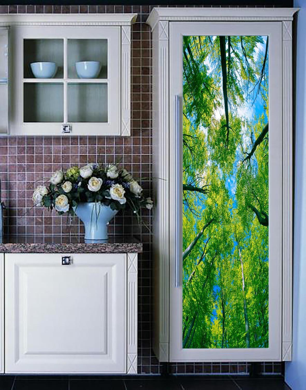 MS玻璃窗户贴膜树林