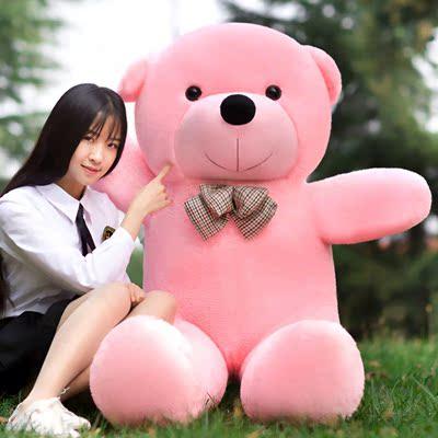 送卡通巨大玩具熊毛毛熊抱抱熊情人节玩具抱枕布娃娃女大型湛江女友批发市场图片