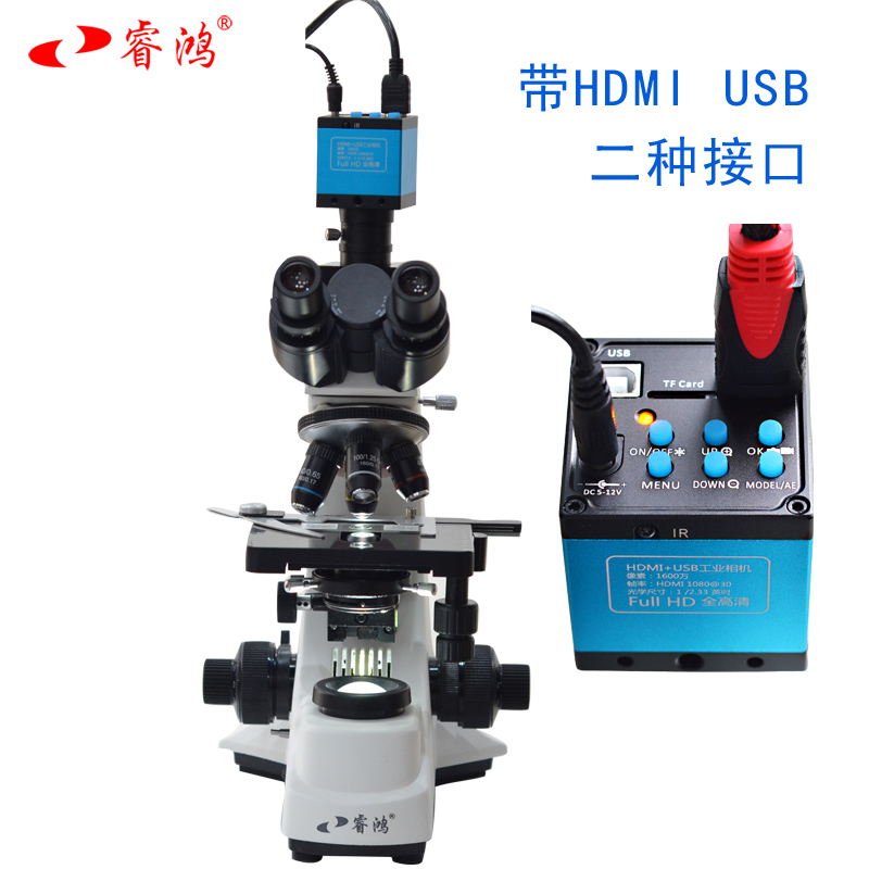 睿鸿专业双目显微镜BM-500T实验科研带显示屏视频生物看粉末颗粒