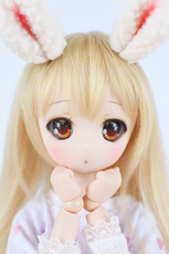 Кукла BJD BJD DD DD DollfieDream