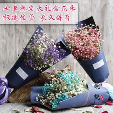 Засушенные цветы 【Звезды】большой букет из гипсофила