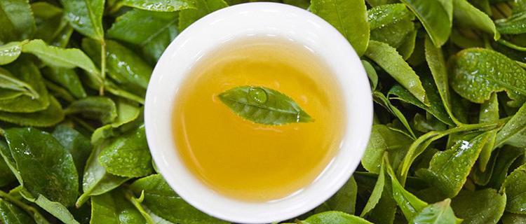 秋茶比金贵  体会茶叶的醇喷鼻