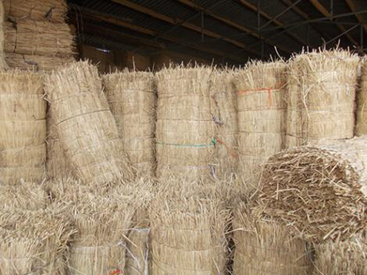 稻草绳 编织成捆草绳 优质干稻草 定做稻草人 稻草工艺品稻草动物