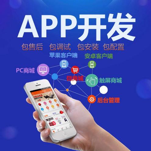开发手机APP定制设计微信小程序企业网站建设源码商城模板外卖