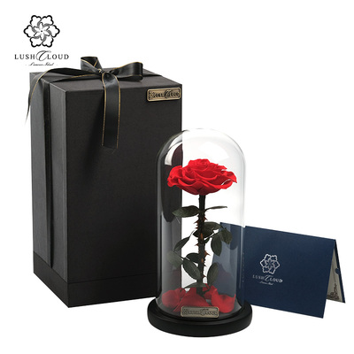 Flower Souvenir Valentine Day Gift Christmas Gifts 378753