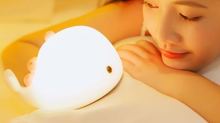 我的灯是艺术品你的是