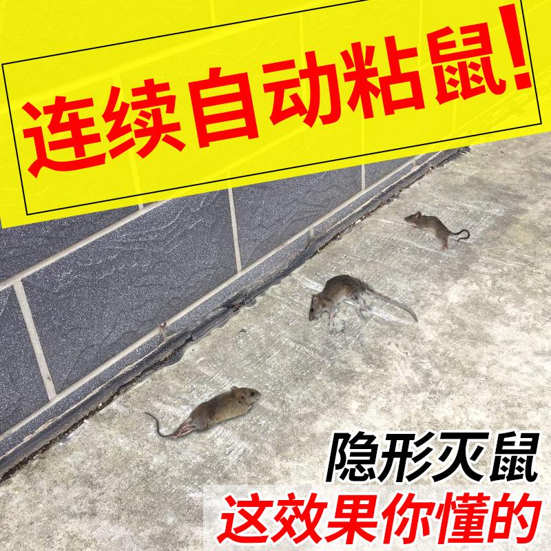 老鼠贴超强力粘鼠板家用灭鼠器捉老鼠夹连续全自动扑鼠笼捕鼠神器