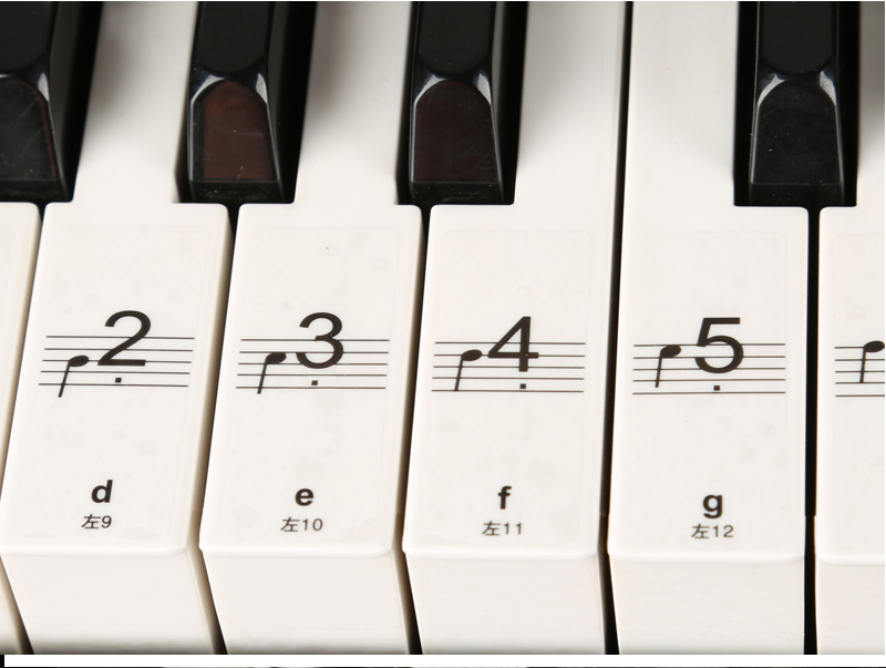 贴纸 88键 61键 透明电子琴 手卷钢琴键贴五线谱简谱
