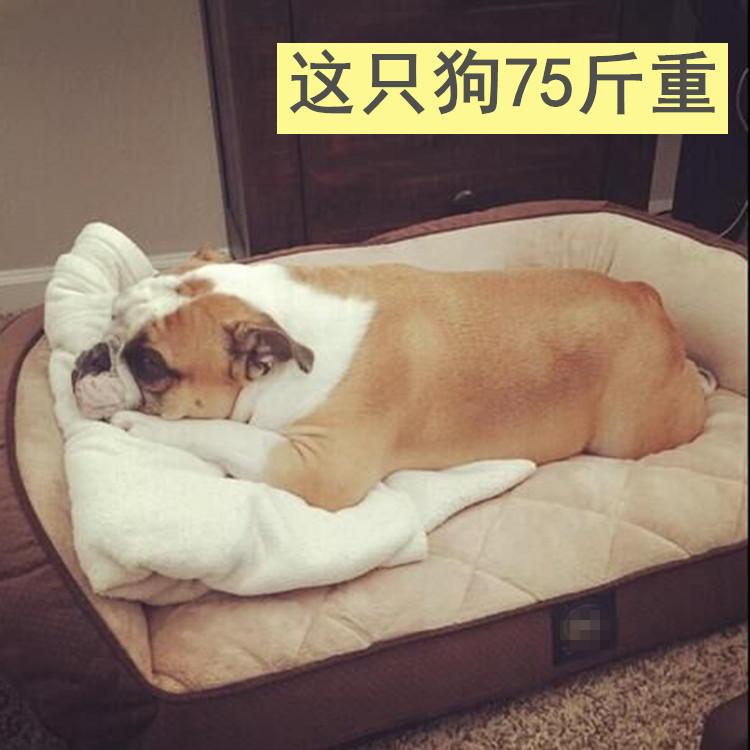 Лежанка для животных США на Amazon по цене до $ 80 любимчика большие собаки питомника коврик диван золотистый Ретривер Лабрадор Самоед