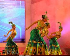 костюм для восточных танцев Jade Shadow
