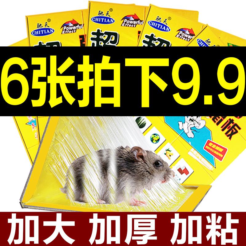 6张 粘鼠板超强力老鼠贴驱鼠灭鼠器夹老鼠胶老鼠笼药家用捕鼠器