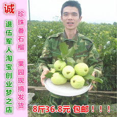 Гуава Guangxi specialty guava 36.8