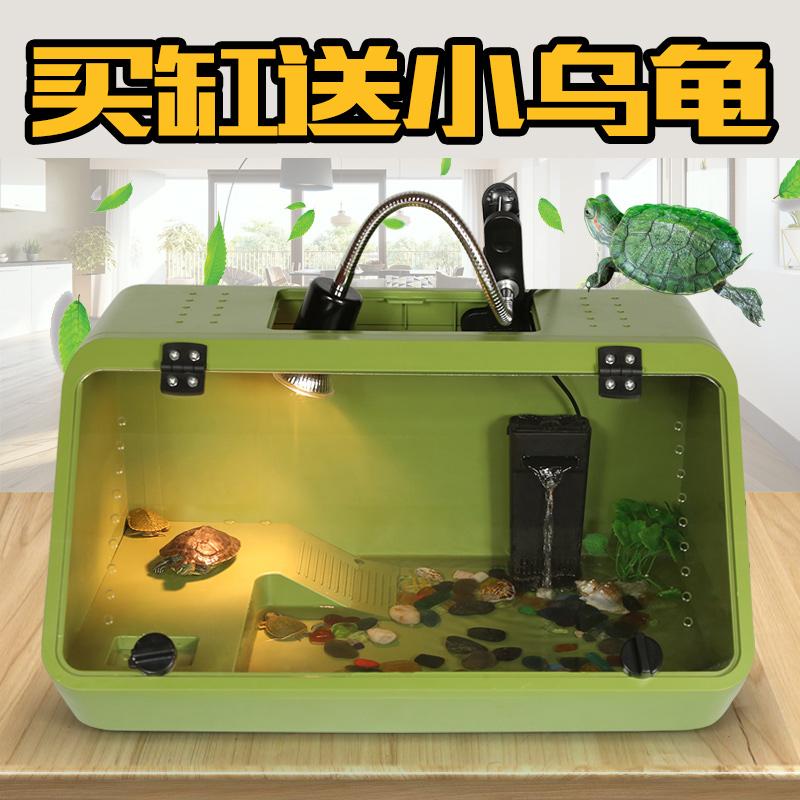 养乌龟缸塑料亚克力 爬虫养殖箱水陆缸带晒台生态 送活体巴西龟