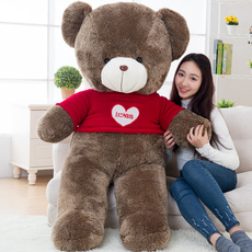 Soft toy Accompanied by love Hug