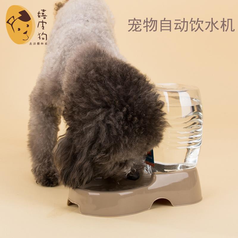 座式宠物自动饮水器猫咪狗狗饮水机狗狗喝水碗中小型犬猫喂水狗碗