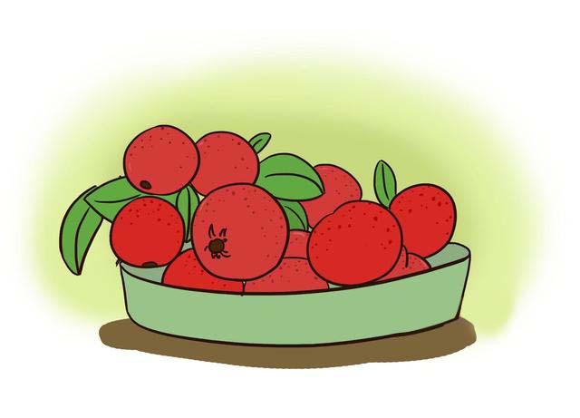 这些水果虽营养,但孕期食用却会伤害胎儿