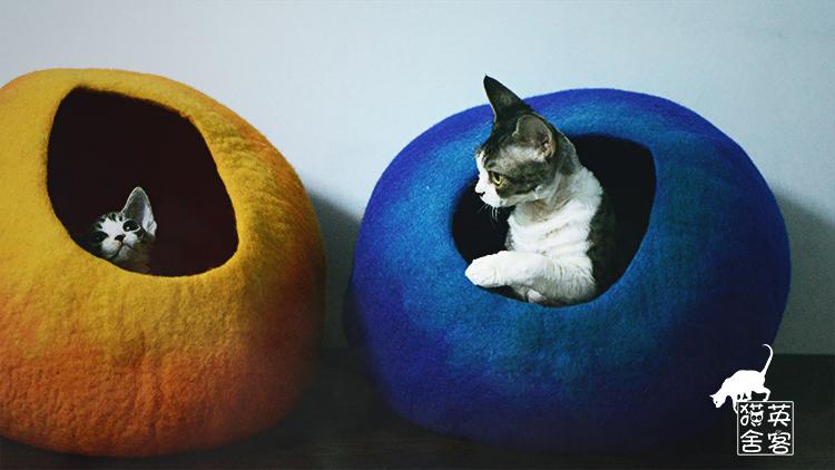 Лежанка для животных British passenger cattery