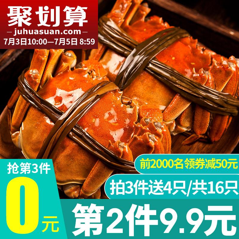 10点开始,洪泽湖 新鲜六月黄大闸蟹16只礼盒装(公母随机1.3~1.8两)