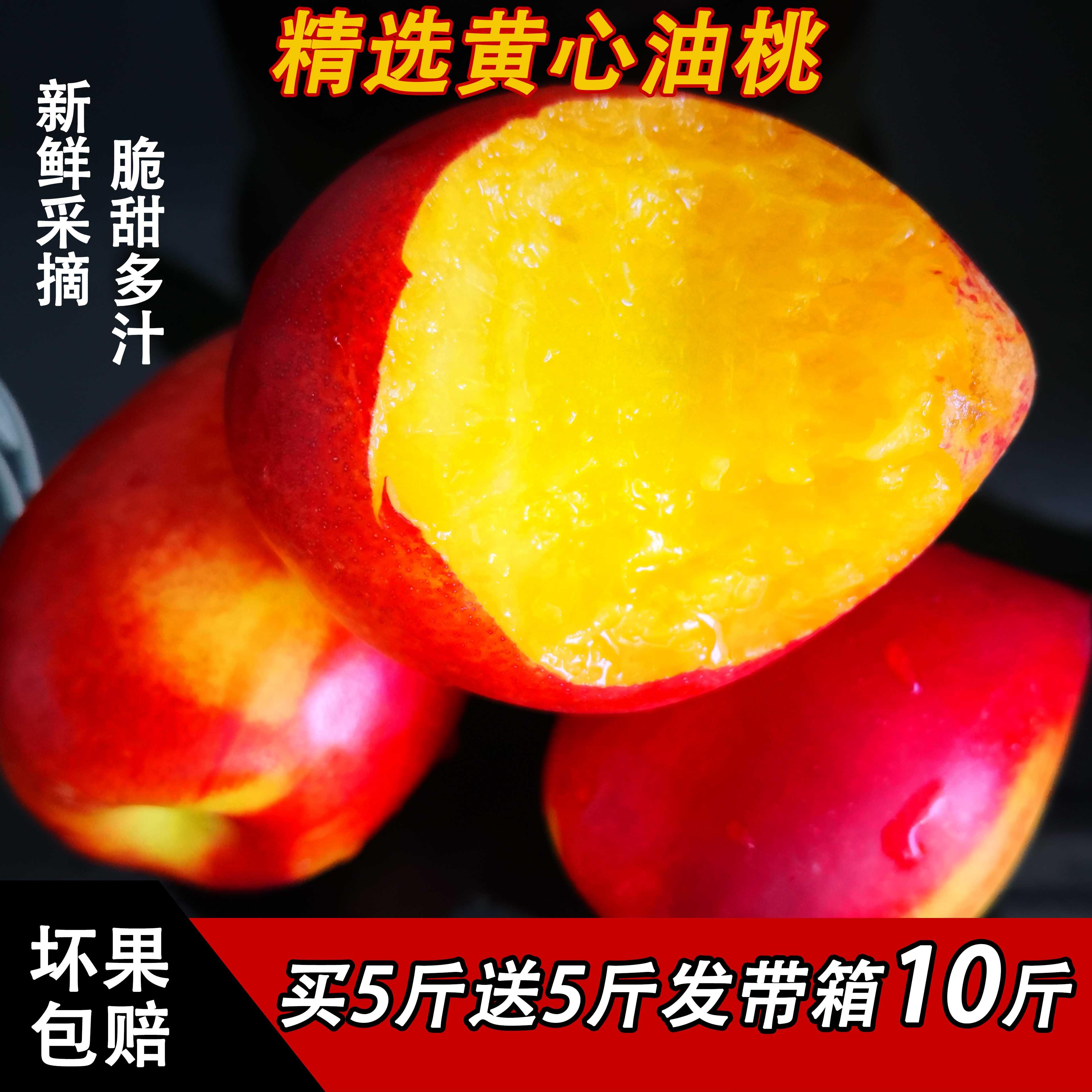 宋妮果 山西黄心油桃 10斤带箱