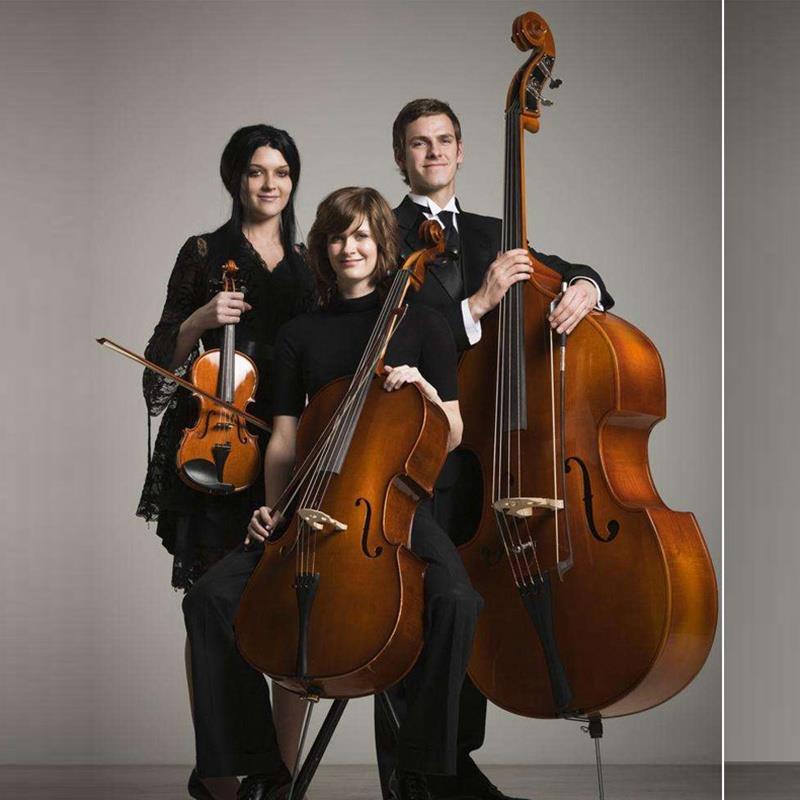 浩成进口大提琴 手工实木虎纹考试演奏 成人儿童初学独奏级大提琴