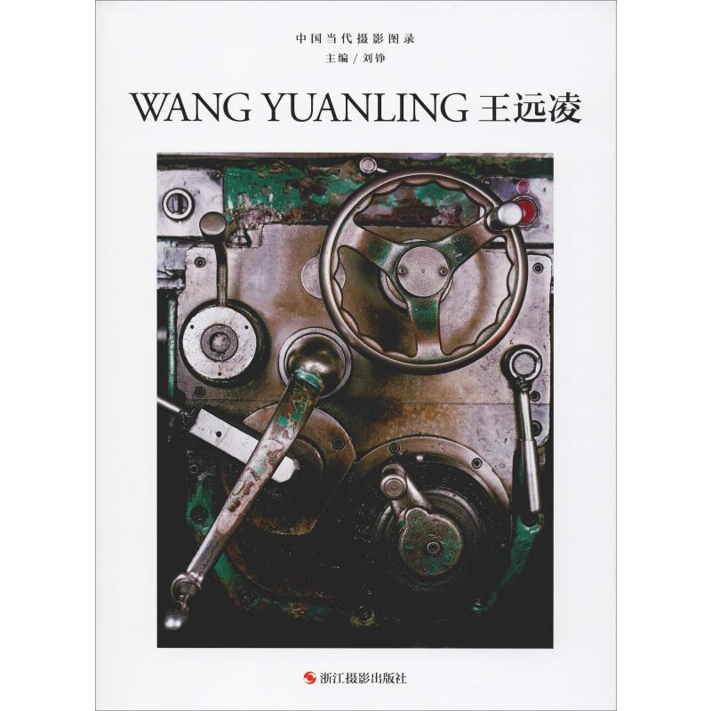 中國當代攝影圖錄 王遠凌 劉錚 編 攝影藝術(新)藝術 新華書店