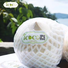 Thailand young coconut 1000g
