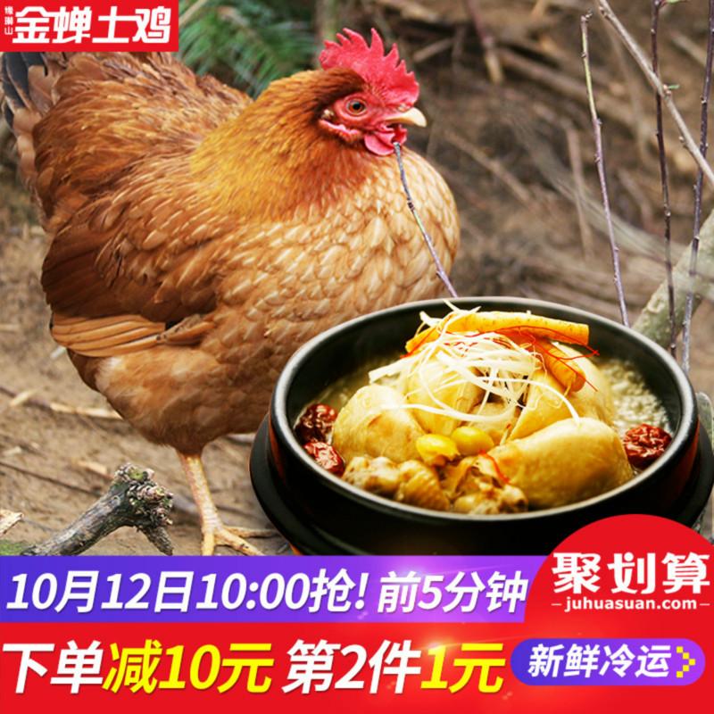 10点开始,缘琳山 金蝉大别山散养老母鸡 1200g*2件89元包邮(拍2件)