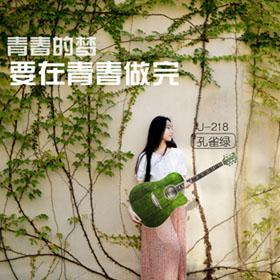 玉蝴蝶单板电箱木吉他民谣初学者41寸学生男女入门玫瑰木吉它乐器
