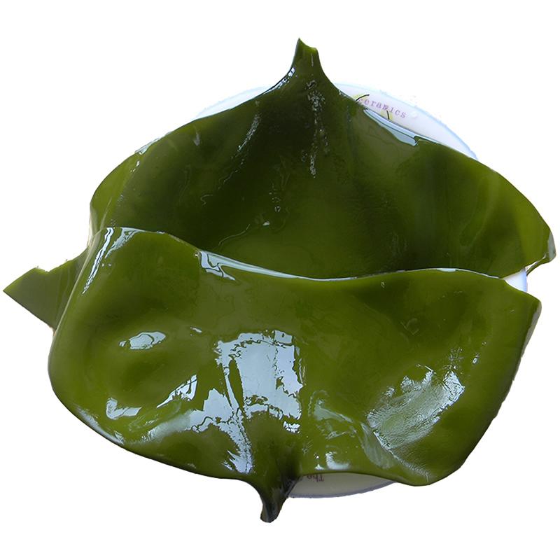 客聚多 荣成特产 新鲜盐渍海带头 5斤