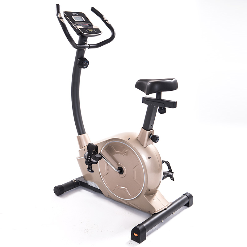 健身车家用健身自行车超静音磁控车脚踏减肥运动室内威宇动感单车